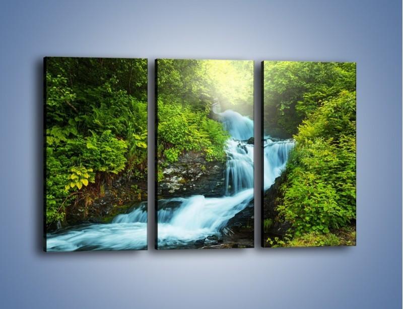 Obraz na płótnie – Spływ wodny i zieleń – trzyczęściowy KN1069W2