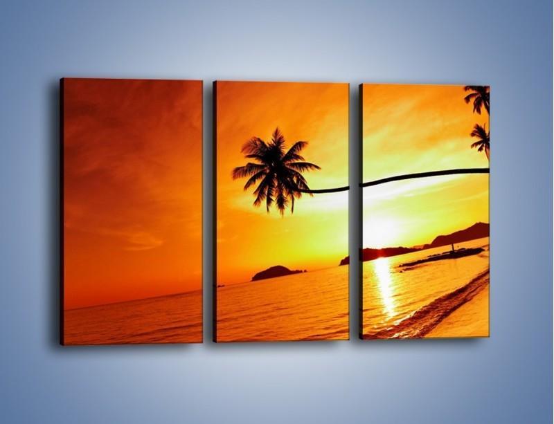Obraz na płótnie – Palma o zachodzie słońca – trzyczęściowy KN1077W2