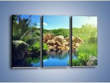 Obraz na płótnie – Bogata roślinność nad wodą – trzyczęściowy KN1082AW2