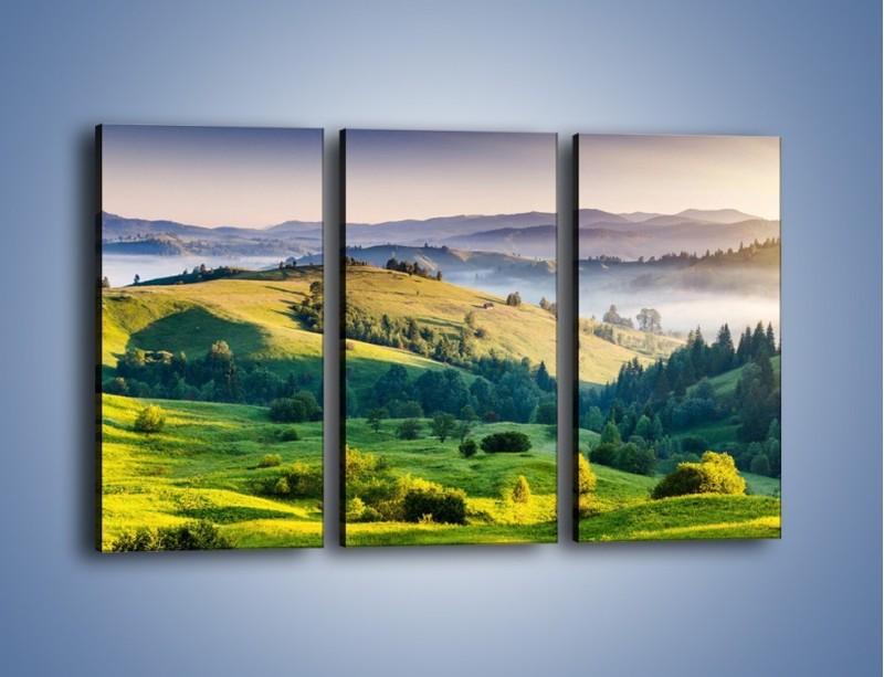 Obraz na płótnie – Tylko zieleń i góry – trzyczęściowy KN1084W2