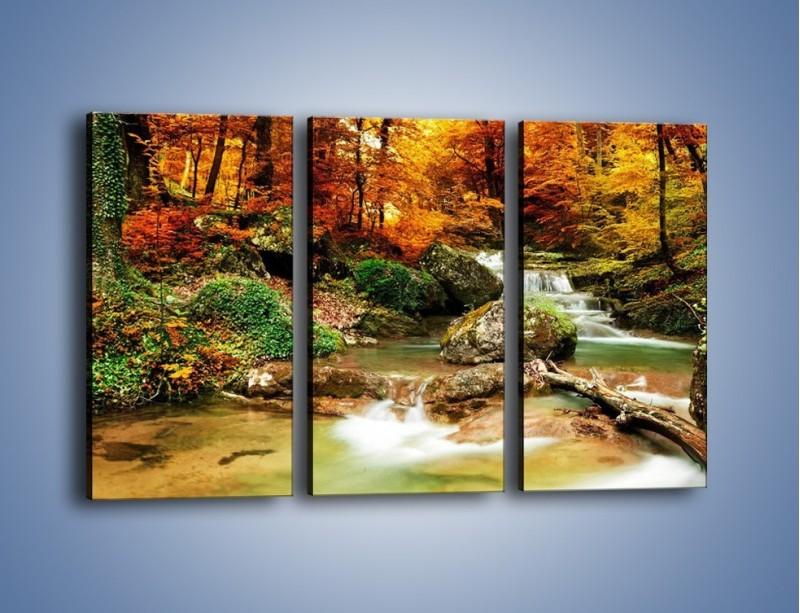 Obraz na płótnie – Jesienne kolory w lesie – trzyczęściowy KN1094AW2