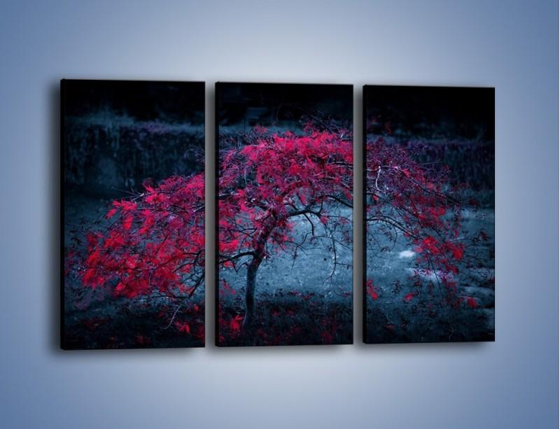 Obraz na płótnie – Czerwone płaczące drzewo – trzyczęściowy KN1101AW2