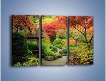 Obraz na płótnie – Alejka między kolorowymi drzewami – trzyczęściowy KN1113W2