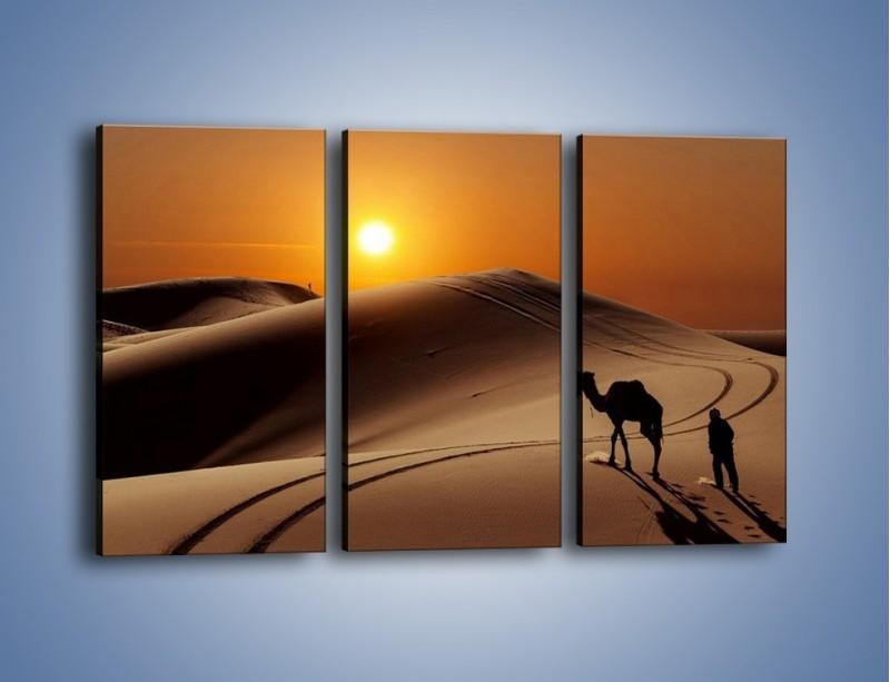 Obraz na płótnie – Człowiek wielbłąd i wydmy – trzyczęściowy KN1134AW2