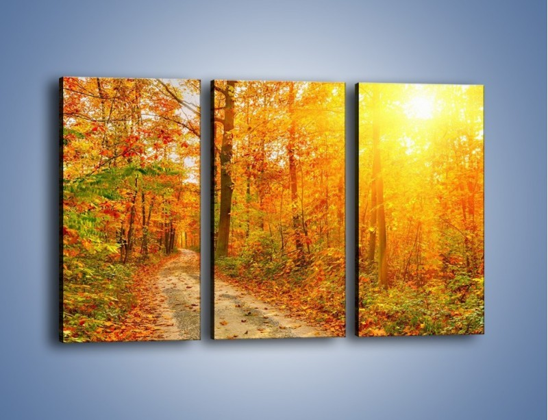Obraz na płótnie – Leśną drużką jesienią – trzyczęściowy KN1163AW2