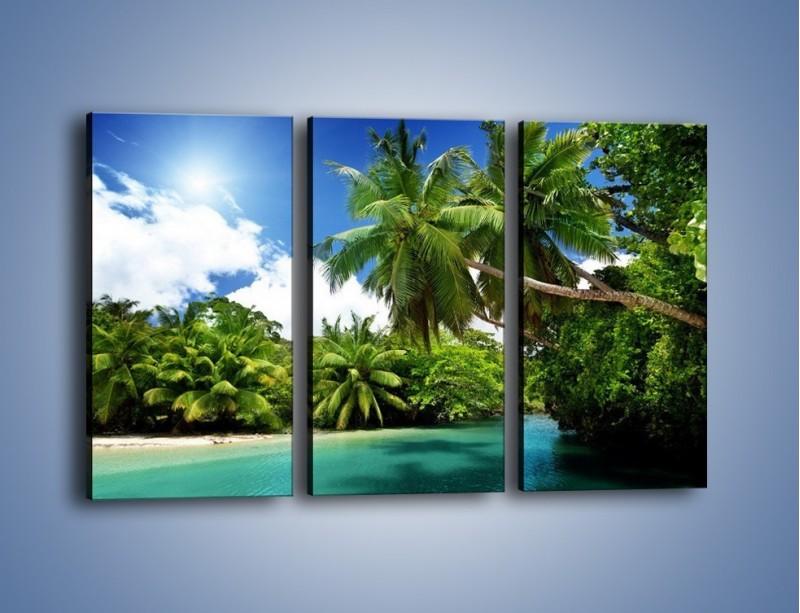 Obraz na płótnie – Rozłożone palmy i woda – trzyczęściowy KN1168AW2