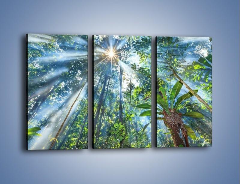 Obraz na płótnie – Dyzio marzyciel i drzewa – trzyczęściowy KN1189AW2