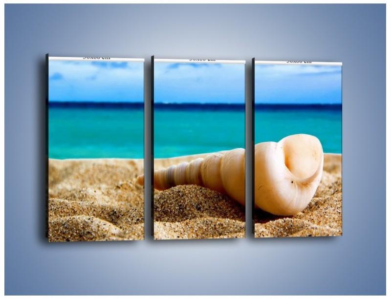 Obraz na płótnie – Czy uda się zobaczyć ślimaka – trzyczęściowy KN1210AW2