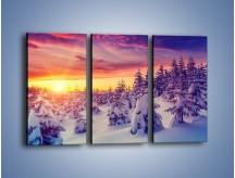 Obraz na płótnie – Choinki w śnieżnej szacie – trzyczęściowy KN1220AW2