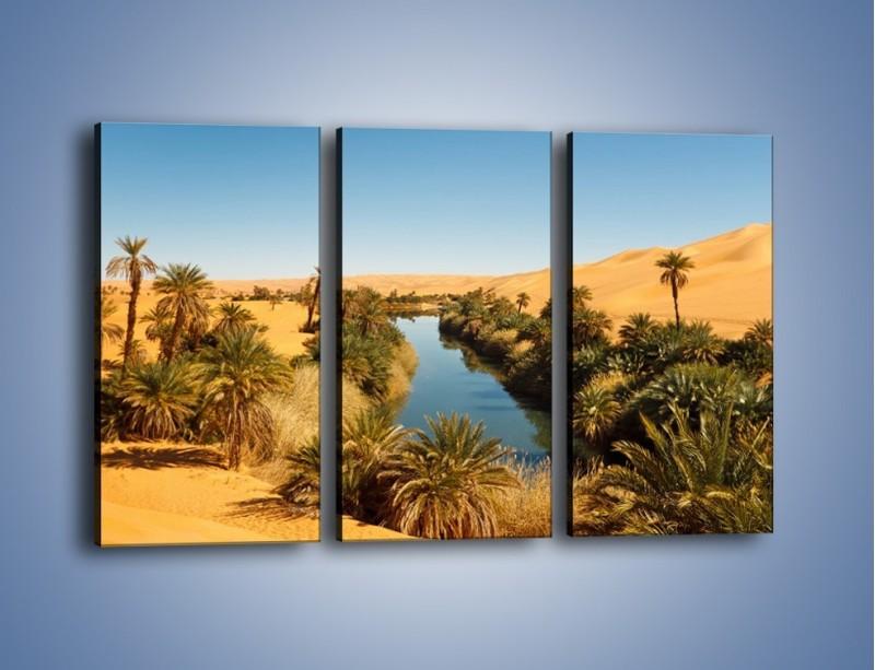 Obraz na płótnie – Woda woda na pustyni – trzyczęściowy KN1294AW2