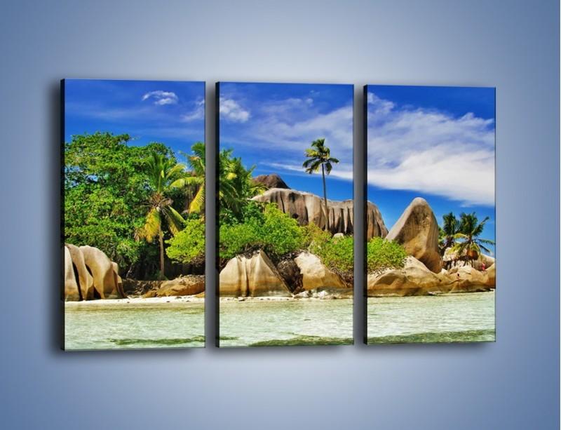 Obraz na płótnie – Tropiki i ich wysokości – trzyczęściowy KN1306AW2