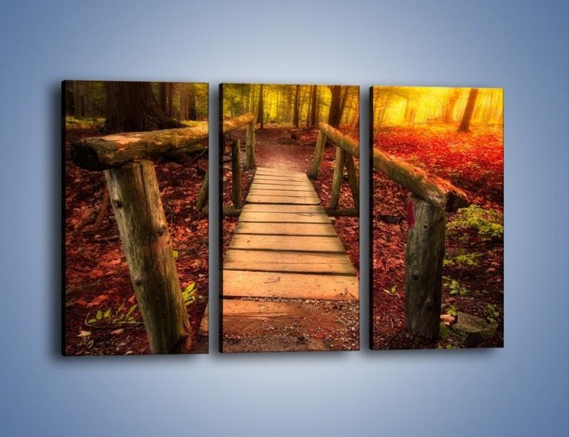 Obraz na płótnie – Krótkie przejście przez las – trzyczęściowy KN1330AW2