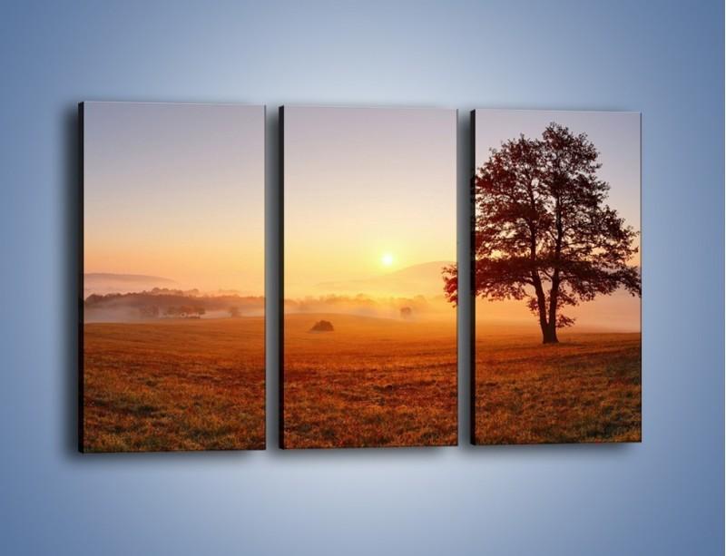 Obraz na płótnie – Krajobraz utopiony we mgle – trzyczęściowy KN1331AW2