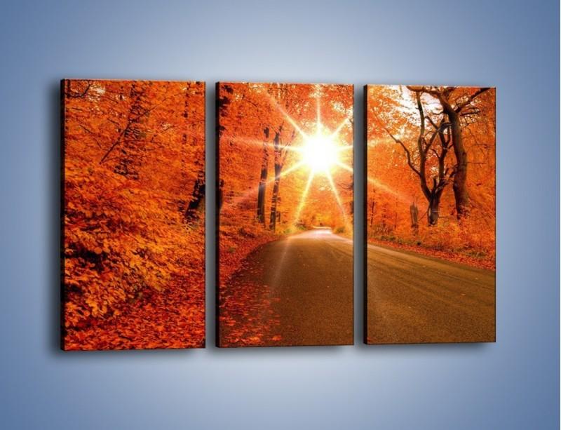 Obraz na płótnie – Droga pełna słońca – trzyczęściowy KN160W2