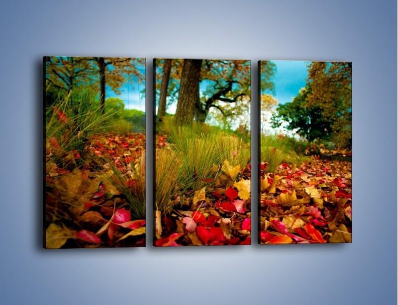 Obraz na płótnie – Droga usłana liśćmi – trzyczęściowy KN172W2