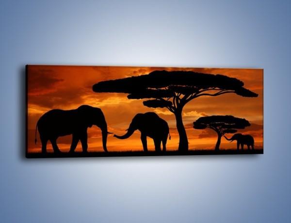 Obraz na płótnie – Słonie w nocnej porze – jednoczęściowy panoramiczny GR284
