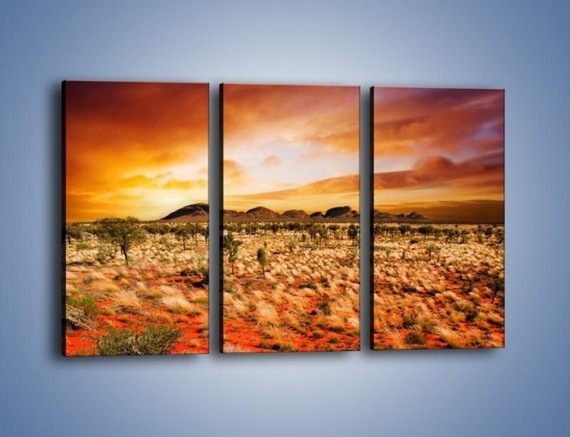 Obraz na płótnie – Oaza w kolorach ognistej ziemi – trzyczęściowy KN192W2