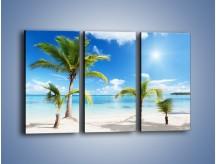 Obraz na płótnie – Palmy na pustej plaży – trzyczęściowy KN245W2