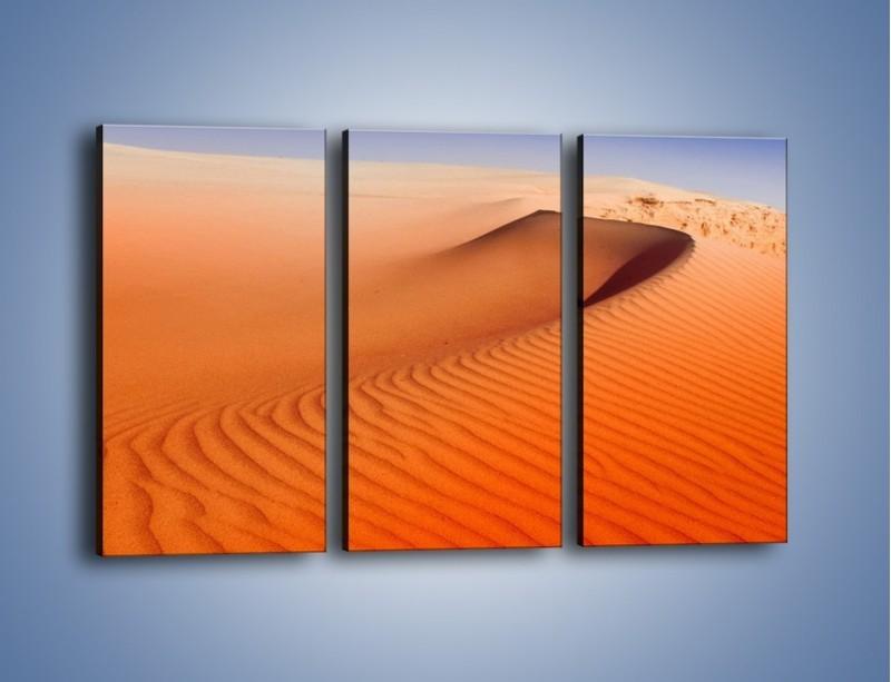 Obraz na płótnie – Pustynny żar – trzyczęściowy KN305W2