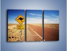 Obraz na płótnie – Droga do raju przez australię – trzyczęściowy KN315W2