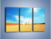 Obraz na płótnie – Błękit nieba i słońce w ziemi – trzyczęściowy KN331W2