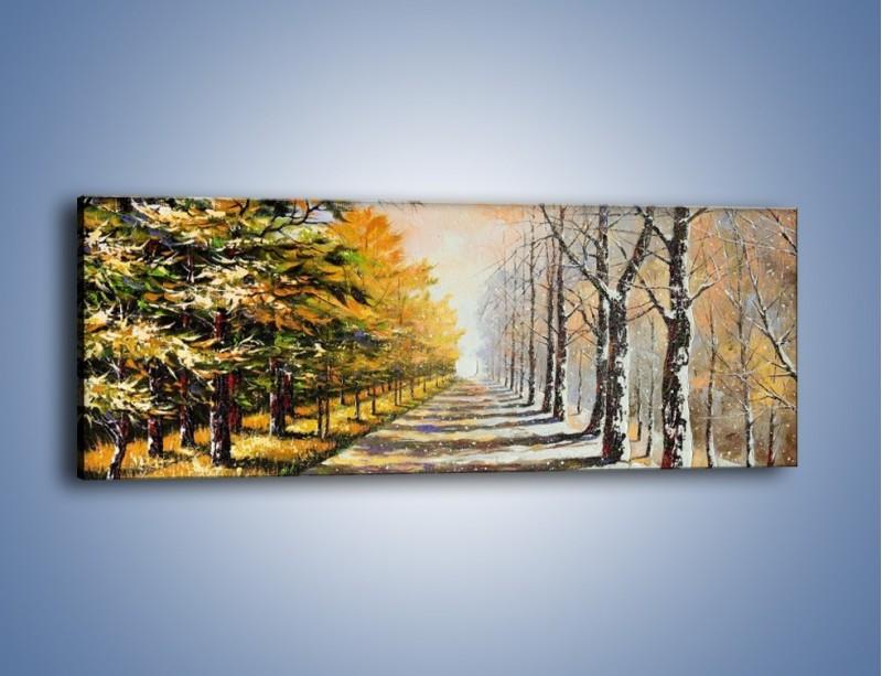 Obraz na płótnie – Trochę jesieni trochę zimy – jednoczęściowy panoramiczny GR292