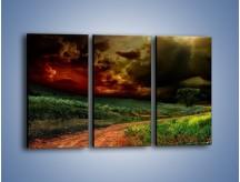 Obraz na płótnie – Groźne chmury nad łąką – trzyczęściowy KN476W2