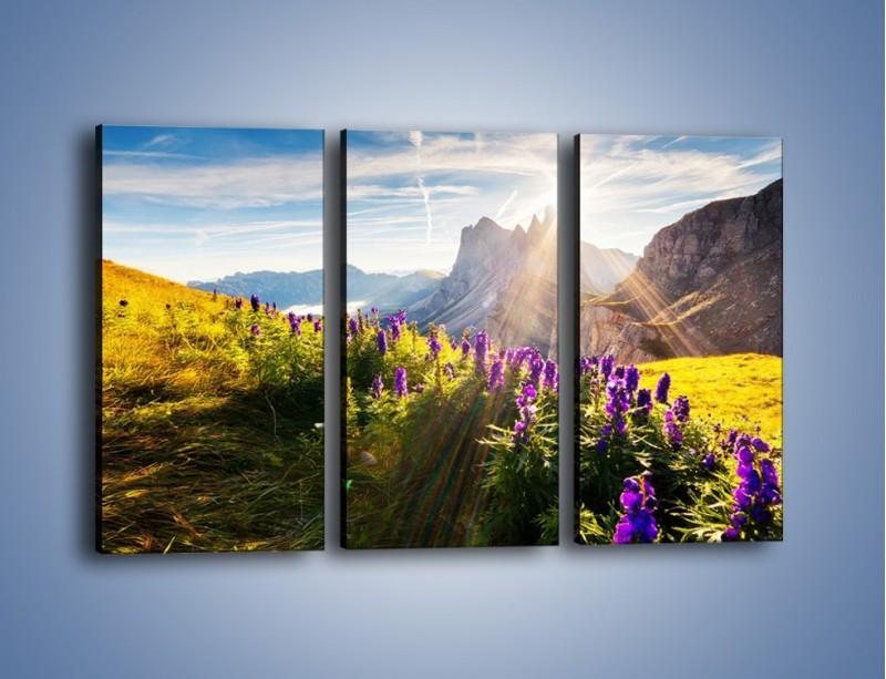 Obraz na płótnie – Góry w poświacie słońca – trzyczęściowy KN502W2