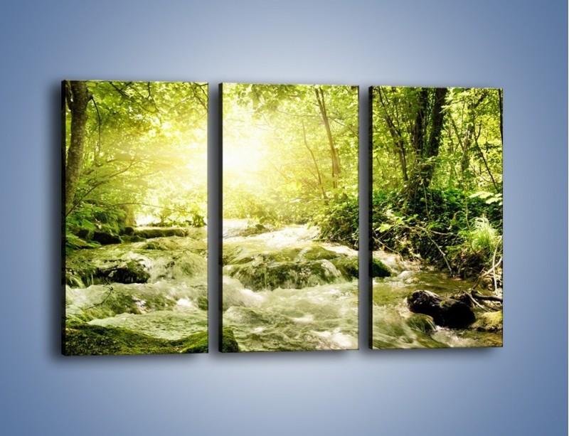 Obraz na płótnie – Wzburzony potok leśny – trzyczęściowy KN508W2