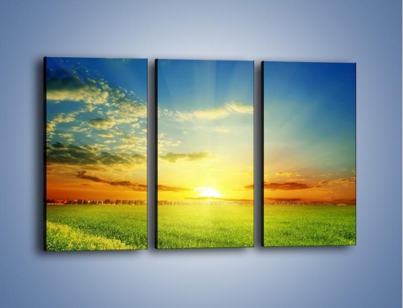 Obraz na płótnie – Łąka pełna zieleni – trzyczęściowy KN542W2