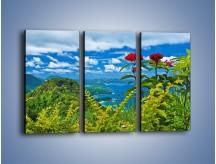 Obraz na płótnie – Bordowe kwiaty w górskim krajobrazie – trzyczęściowy KN561W2