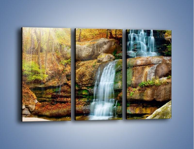Obraz na płótnie – Leśne podłoże późną jesienią – trzyczęściowy KN563W2