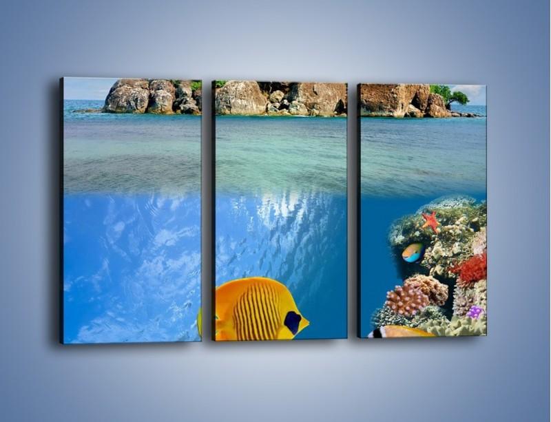 Obraz na płótnie – Podwodny świat na wyspie – trzyczęściowy KN586W2