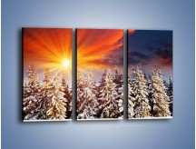 Obraz na płótnie – Choinki w środku zimy – trzyczęściowy KN682W2