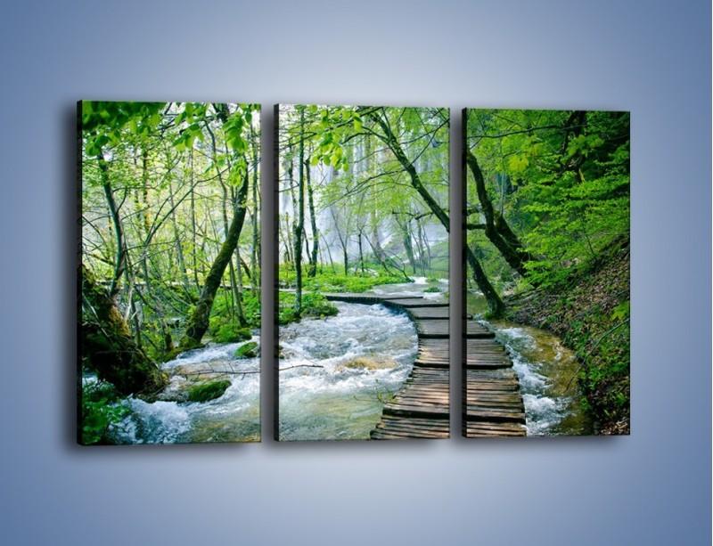 Obraz na płótnie – Drewniana kładką przez potok – trzyczęściowy KN720W2