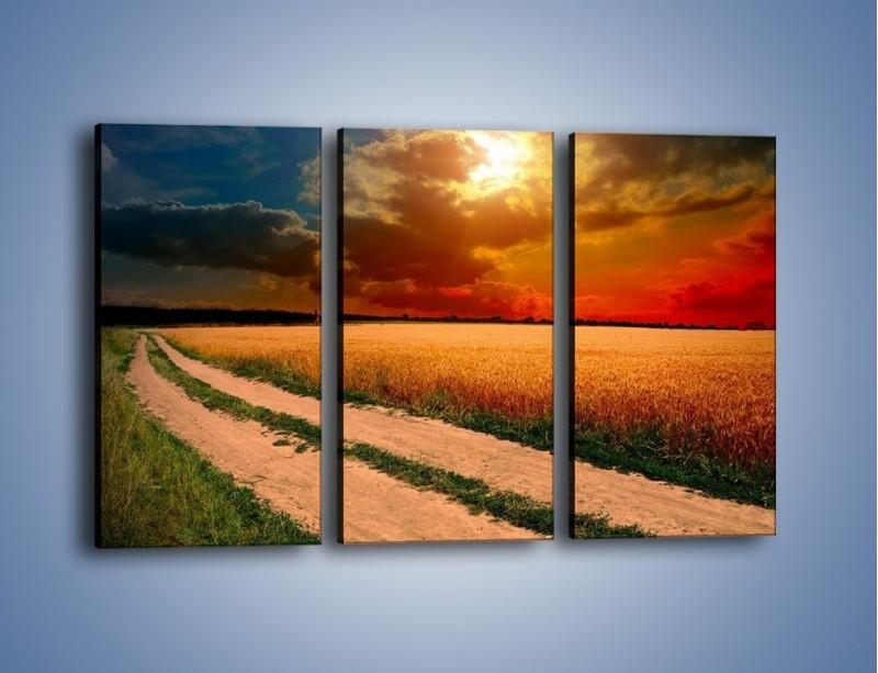 Obraz na płótnie – Zbożowa polana i jej cały urok – trzyczęściowy KN776W2