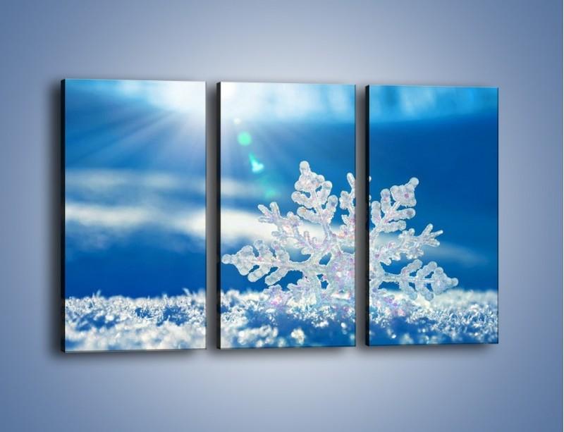 Obraz na płótnie – Diamentowa śnieżynka – trzyczęściowy KN808W2