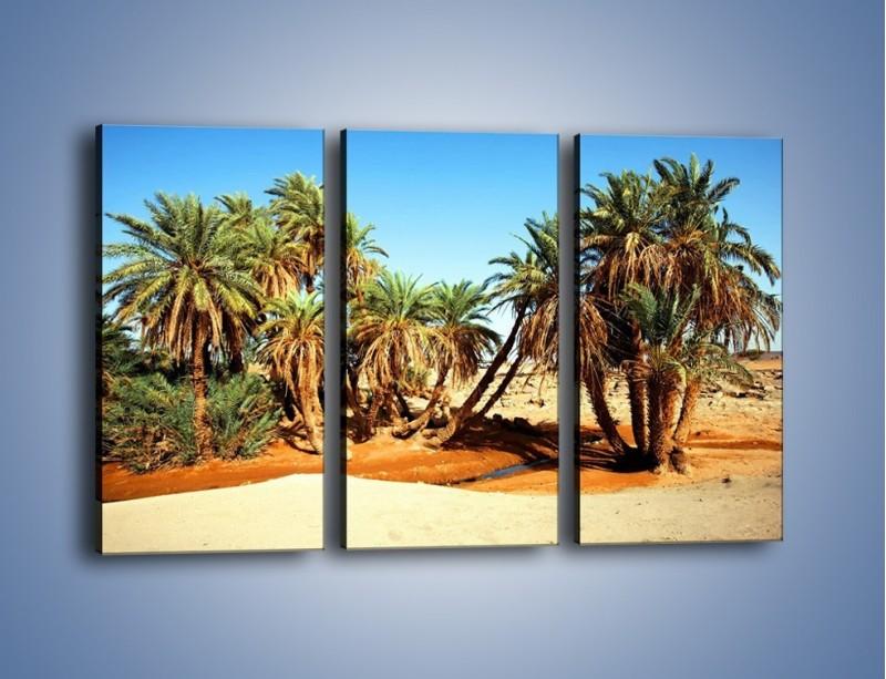 Obraz na płótnie – Palmowa rodzina w komplecie – trzyczęściowy KN809W2