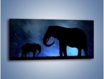 Obraz na płótnie – Córka i mama nocą – jednoczęściowy panoramiczny GR315