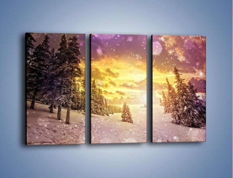 Obraz na płótnie – Śnieżna kraina – trzyczęściowy KN868W2