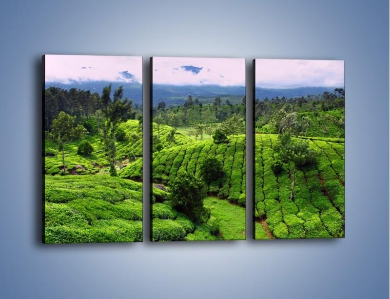 Obraz na płótnie – Rozległa zielona kraina – trzyczęściowy KN872W2