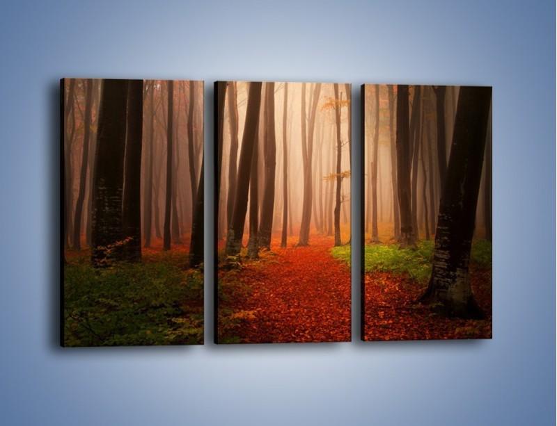 Obraz na płótnie – Las pełen tajemnic – trzyczęściowy KN909W2