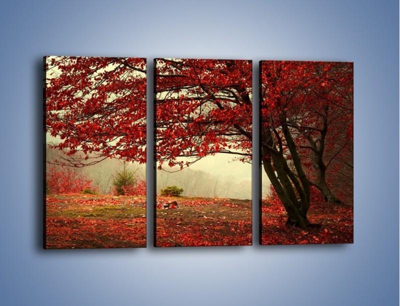 Obraz na płótnie – Spadające liście z drzew – trzyczęściowy KN910W2