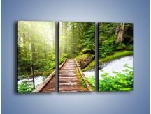 Obraz na płótnie – Bezpieczna droga przez las – trzyczęściowy KN922W2