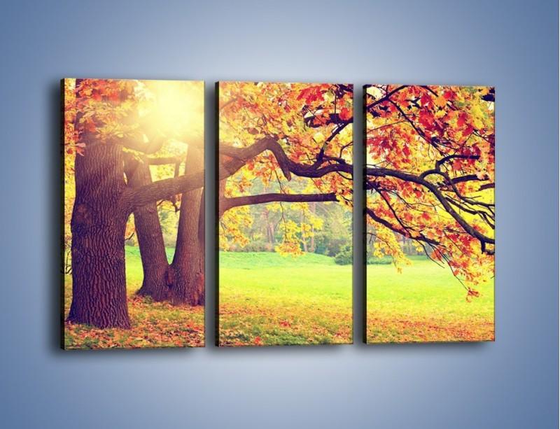 Obraz na płótnie – Jesienią w parku też jest pięknie – trzyczęściowy KN967W2