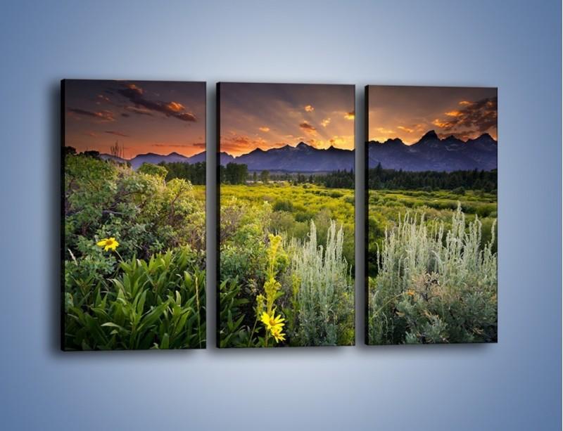 Obraz na płótnie – Wieczorny spokój na polanie – trzyczęściowy KN987W2
