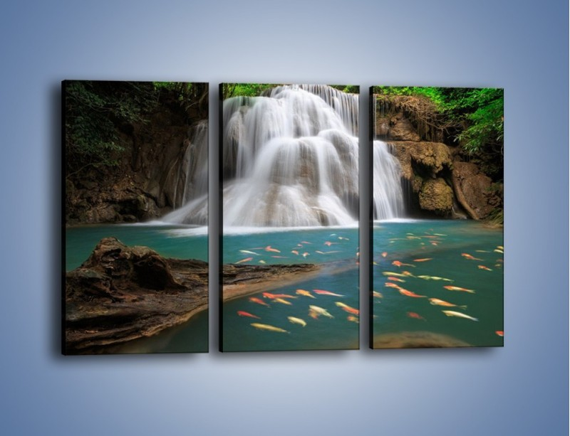 Obraz na płótnie – Wodospad i kolorowe rybki – trzyczęściowy KN994W2