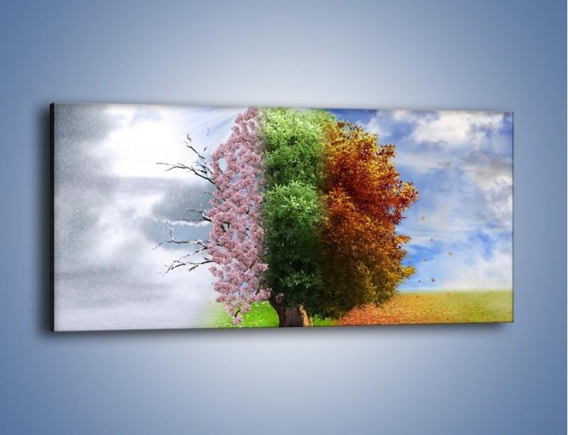 Obraz na płótnie – Cztery pory roku – jednoczęściowy panoramiczny GR333
