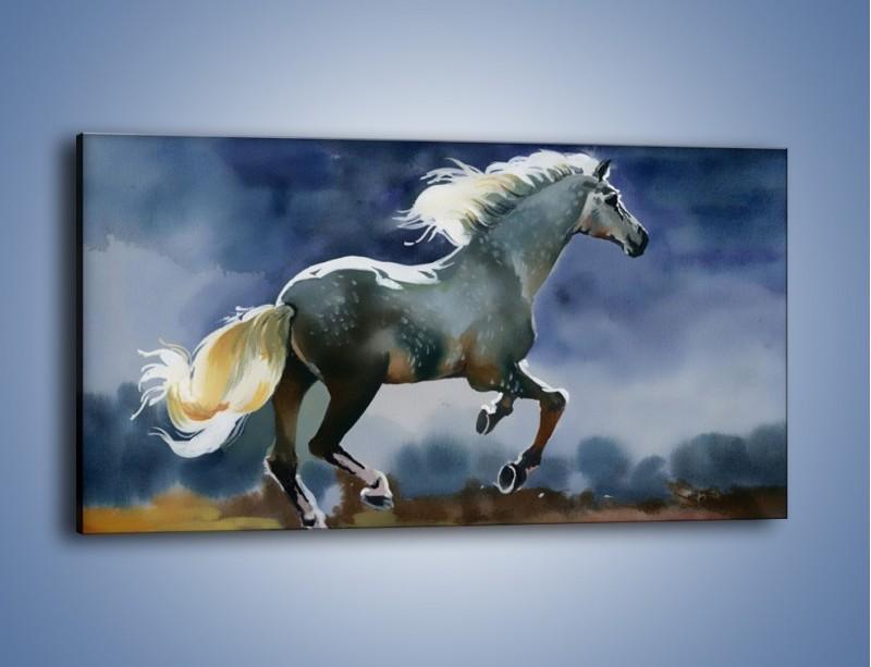 Obraz na płótnie – Bieg z koniem przez noc – jednoczęściowy panoramiczny GR339