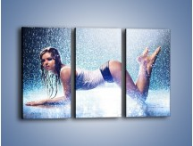 Obraz na płótnie – Ciało zmoczone deszczem – trzyczęściowy L045W2